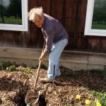 Volunteer Work Week 1 2012
